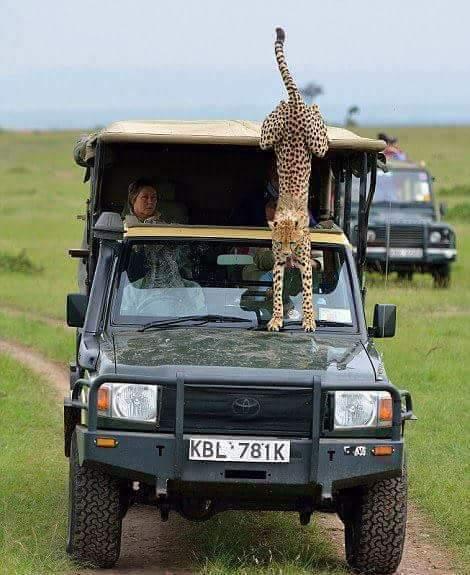 4x4 Car Hire Dar es salaam Airport Tanzania, 4wd  self drive, unlimited mileage